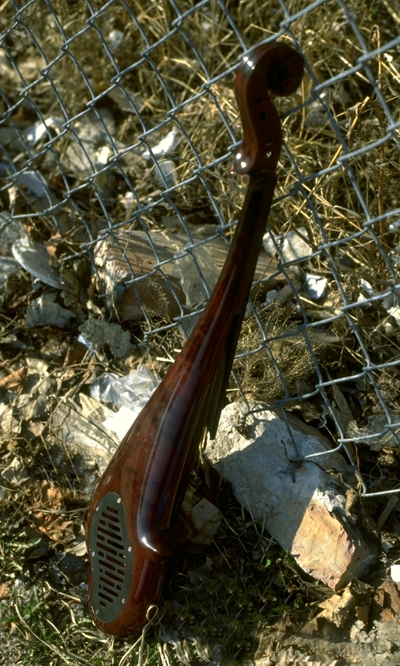 Specimen Custom Electric Violin