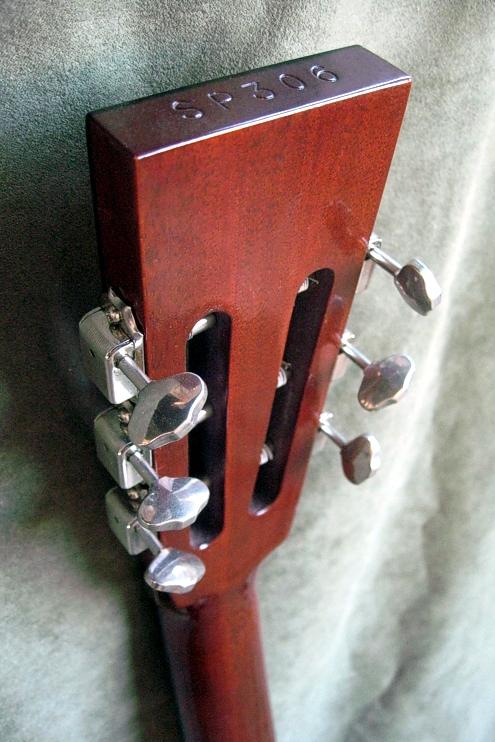 Specimen Luddite Ultra Guitar