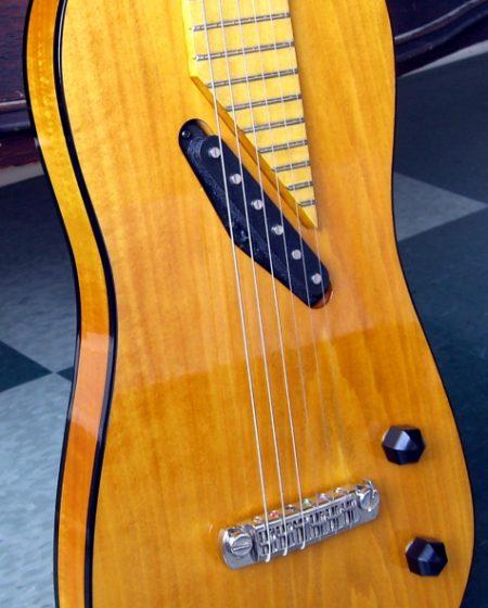 Specimen Jacobite Custom Guitar