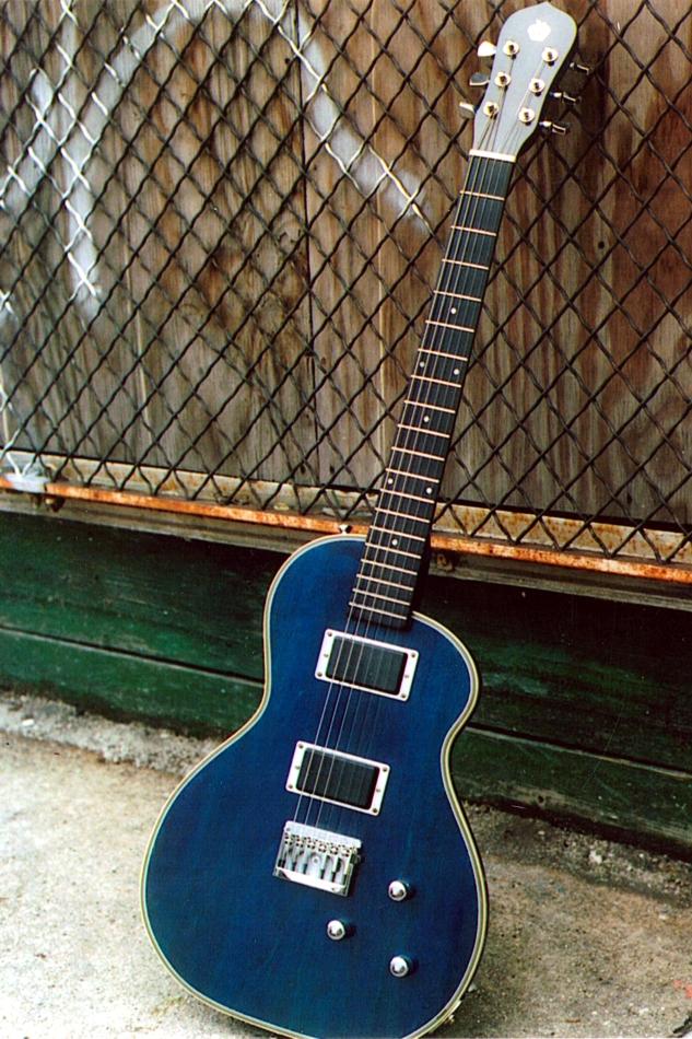 Specimen Custom Pippin Guitar