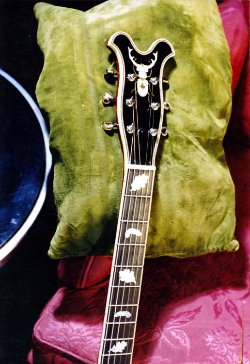 Specimen Custom Electric Guitar