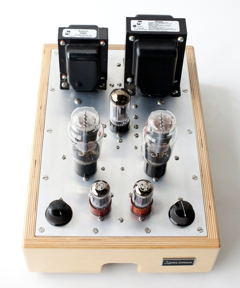 Specimen Hi Fi Tube Amplifier
